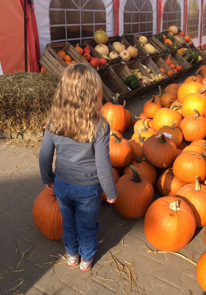 Warsaw pumpkin patch